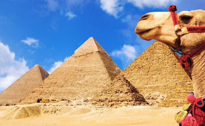 7 Days Cairo, Luxor & Alexandria Tour -Trips in Egypt