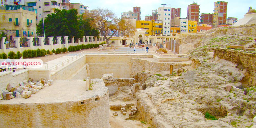 Alexandria Serapeum - Things to Do in Alexandria - Trips in Egypt