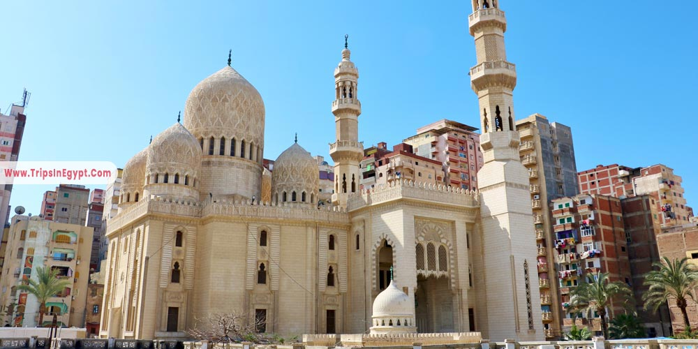 Mursi Abu Al Abbas - Things to Do in Alexandria - Trips in Egypt